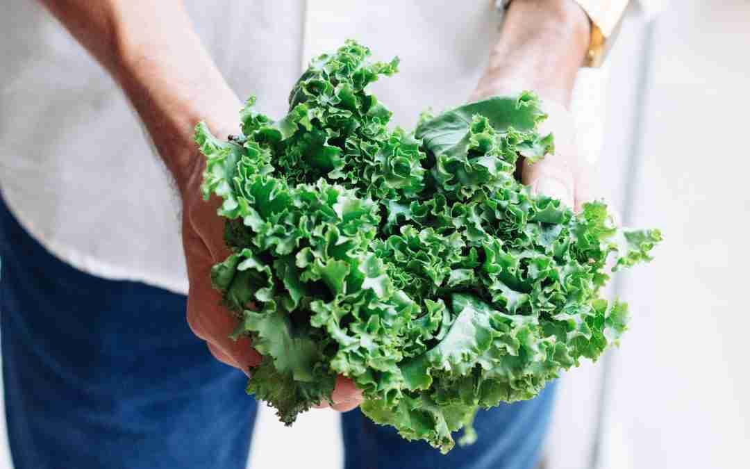 Col Kale, com cuinar-la